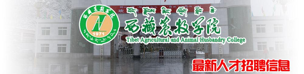 西藏农牧学院2015年人才引进计划