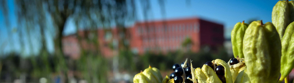 山西农业大学信息学院高职称、高层次人才引进计划