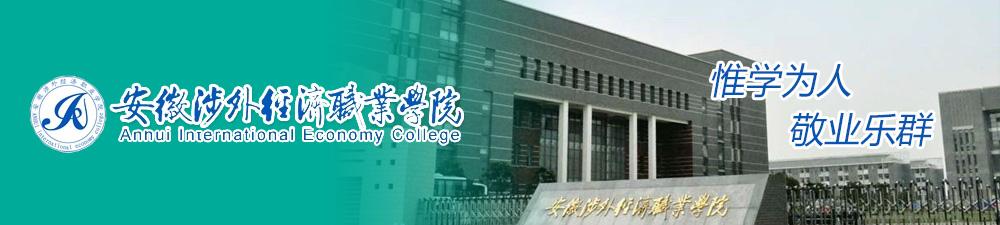 安徽涉外经济职业学院2017年度人