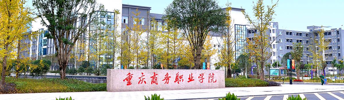 重庆商务职业学院2019年招聘公告