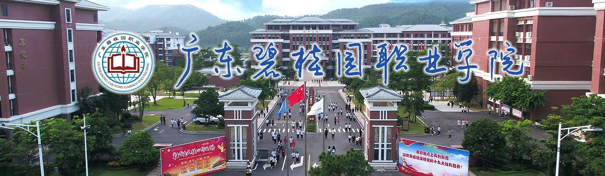 广东碧桂园职业学院2019年招聘启事