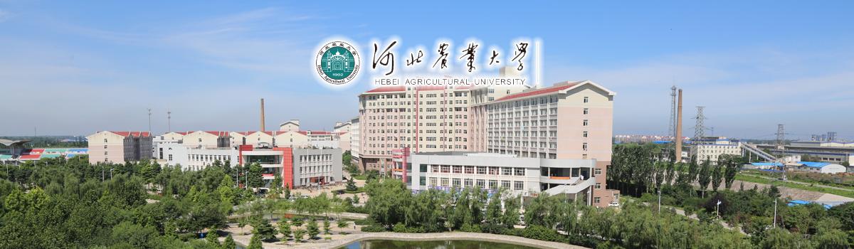 河北农业大学2020年人才引进办法