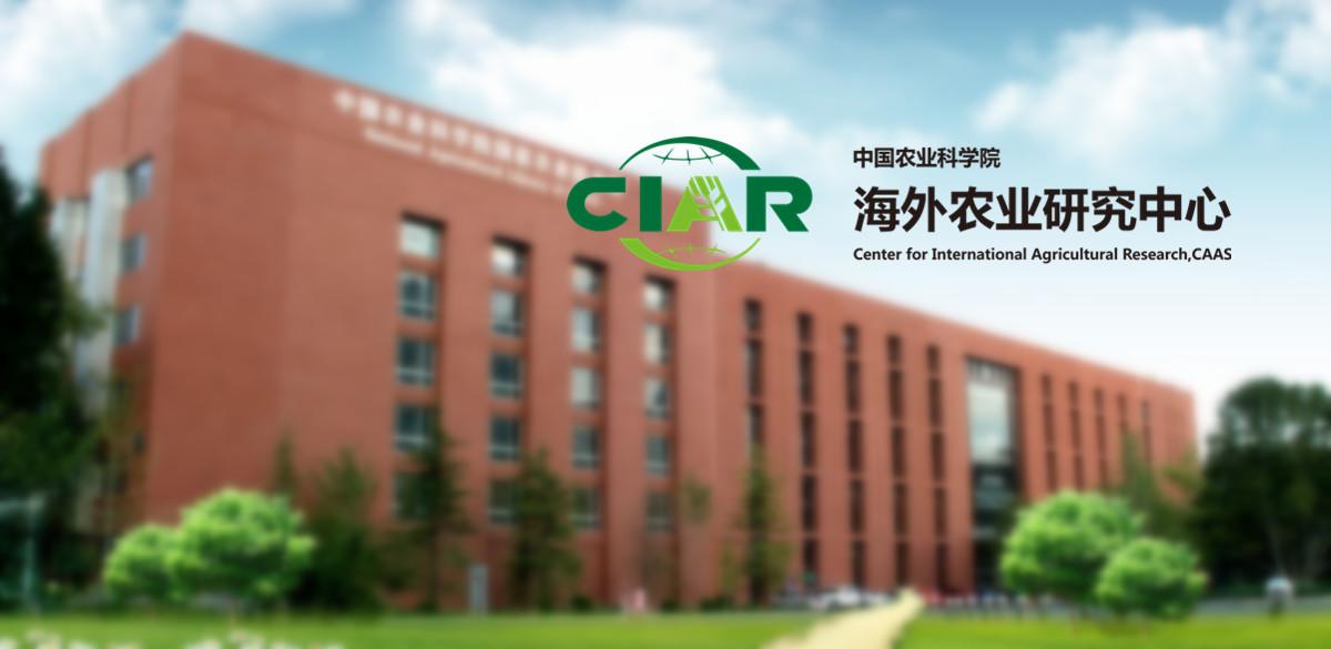 中国农业科学院农田灌溉研究所20