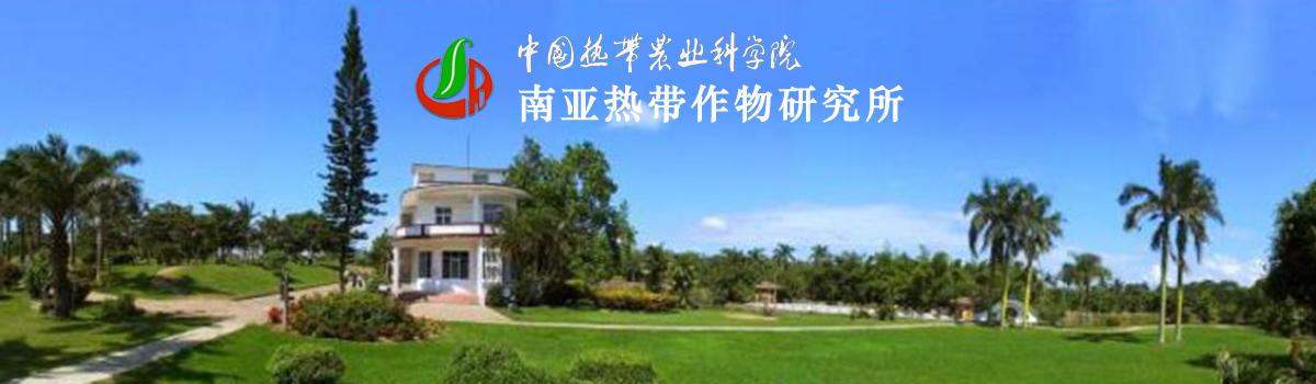 中国热带农业科学院南亚热带作物研究所2021年度高层次人才引进需求公告