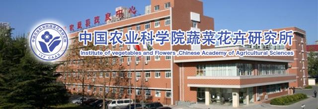 中国农业科学院蔬菜花卉研究所
